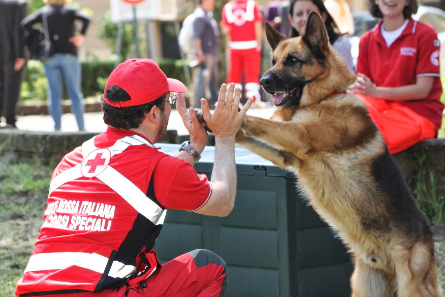Attività Unità Cinofila della Croce Rossa di Roma